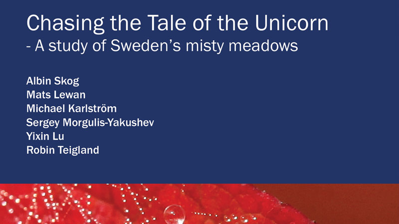 Chasing The Tale Of The Unicorn - Full Report
