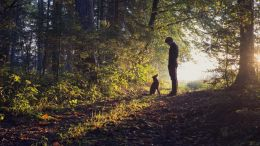 man with dog in a forest thinking about leadership